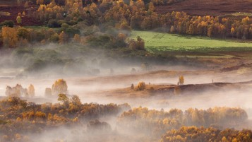 Scottish Misty Morning wallpapers and stock photos