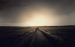 Dark Path & Fields wallpapers and stock photos