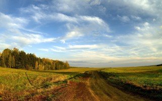 Path Fields Grass Forest & Sky wallpapers and stock photos
