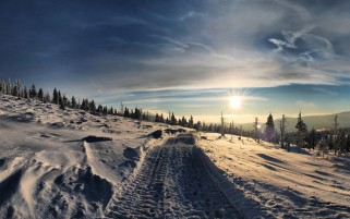 Hill Snow Trails Sun & Trees wallpapers and stock photos