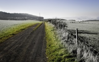 Grayscale Fields Path & Fences wallpapers and stock photos