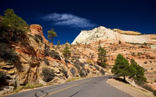 Deep Sky Trees Road Canyon wallpapers and stock photos