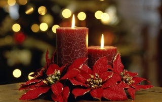 Elegant Candles wallpapers and stock photos