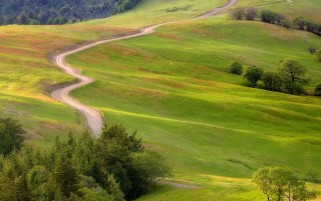 Hills Footh Path & Trees wallpapers and stock photos