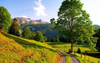 Foot Way Hills Trees Mountains wallpapers and stock photos