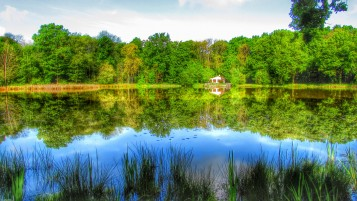 Pond in HDR wallpapers and stock photos