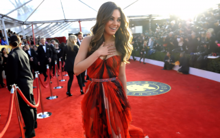 Mila Kunis on the Red Carpet wallpapers and stock photos