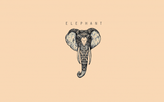 ELEPHANT wallpapers and stock photos