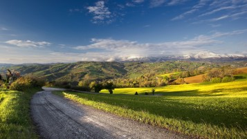 Fields Road Trees Mountains wallpapers and stock photos