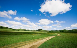 Grass Fields Road Trees Sky wallpapers and stock photos