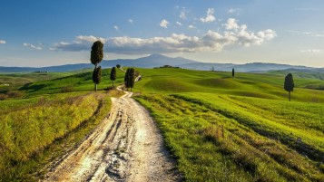 Path Hills Trees Tuscany Italy wallpapers and stock photos