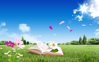 Random: Book Flowers Grass Trees & Sky