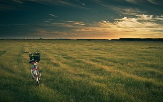 Bicycle Time Out Field Horizon wallpapers and stock photos