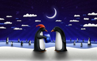 Funny Penguins wallpapers and stock photos