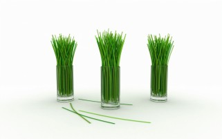 Digital Grass Glasses wallpapers and stock photos