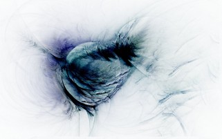 Blue Feathers Abstract wallpapers and stock photos