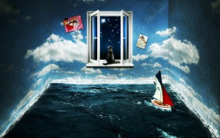 Window Cat Water Yacht Night wallpapers and stock photos