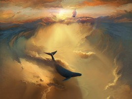 Ocean navei Whale Sun Light wallpapers and stock photos
