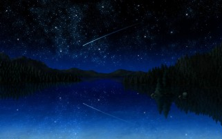 Random: Stars Meteor Lake Forest Night