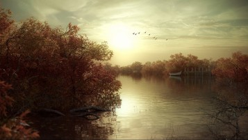 Autumn Trees Sea Bird Sky Boat wallpapers and stock photos