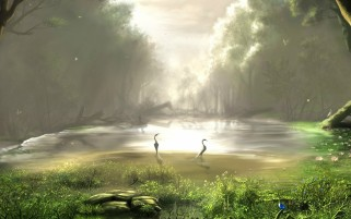 Forest Mist Lake Birds Grass wallpapers and stock photos