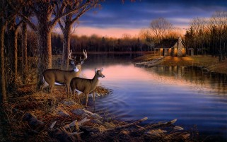 Lake Cottage Boats Deer Nature wallpapers and stock photos