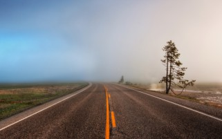 Foggy Road wallpapers and stock photos