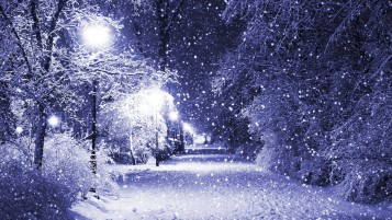 Winter Park at Night wallpapers and stock photos