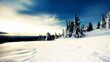Sunny Winter Day wallpapers and stock photos