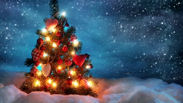 Lovely Christmas Tree wallpapers and stock photos