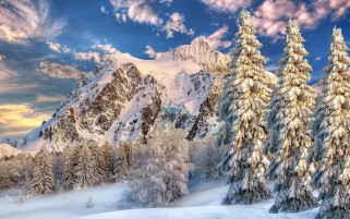 Mountain Behind Forest Snow On wallpapers and stock photos