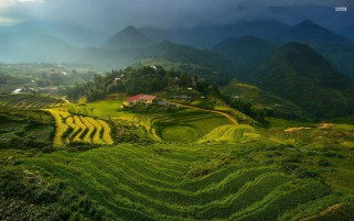 Terrazas del arroz de Vietnam Asia wallpapers and stock photos