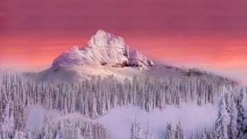 Snowy Mountain Peak wallpapers and stock photos