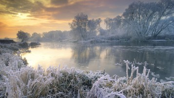 Amazing Winter Lake and Forest wallpapers and stock photos