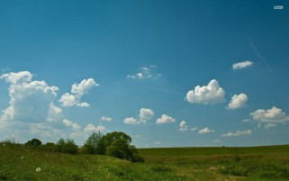 Fluffy Clouds Field Bush Trees wallpapers and stock photos