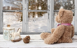 Toy Bear Beside Window wallpapers and stock photos
