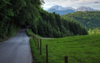 Forest Road Fences Mountains wallpapers and stock photos