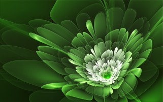 Green Flower Abstract wallpapers and stock photos