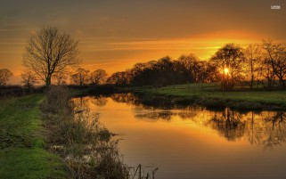 Orange Sunset Pond Trees Grass wallpapers and stock photos