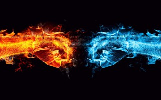 Fire Versus Water Fists Battle wallpapers and stock photos
