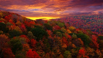 Stunning Touch Of Autumn wallpapers and stock photos