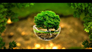 Little Tree Abstract Fantasy wallpapers and stock photos