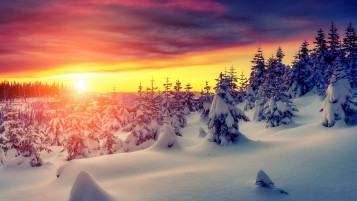 Gorgeous Winter Sunrise wallpapers and stock photos