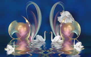 Swans Water Reflect Abstract wallpapers and stock photos