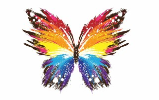 Butterfly Pattern Colorful wallpapers and stock photos