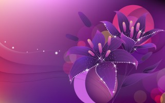 Lily Purple Shiny Abstract wallpapers and stock photos