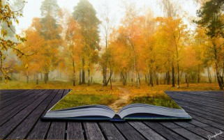 Random: Autumn Book