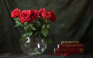 Red Roses & Books wallpapers and stock photos