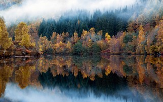 Multicolored Autumn wallpapers and stock photos