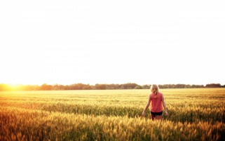 Woman Walking Wheat Field Sky wallpapers and stock photos